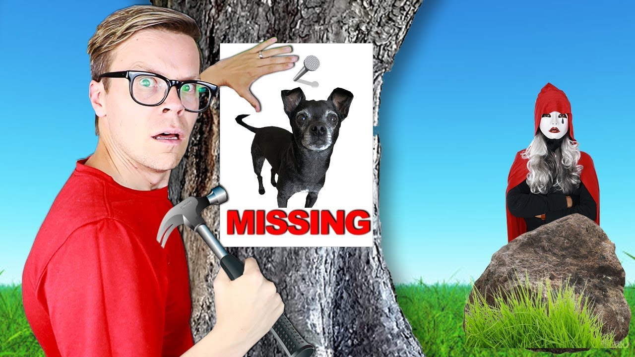 Our Dog Is Missing New Clues Found At Hacker Mansion