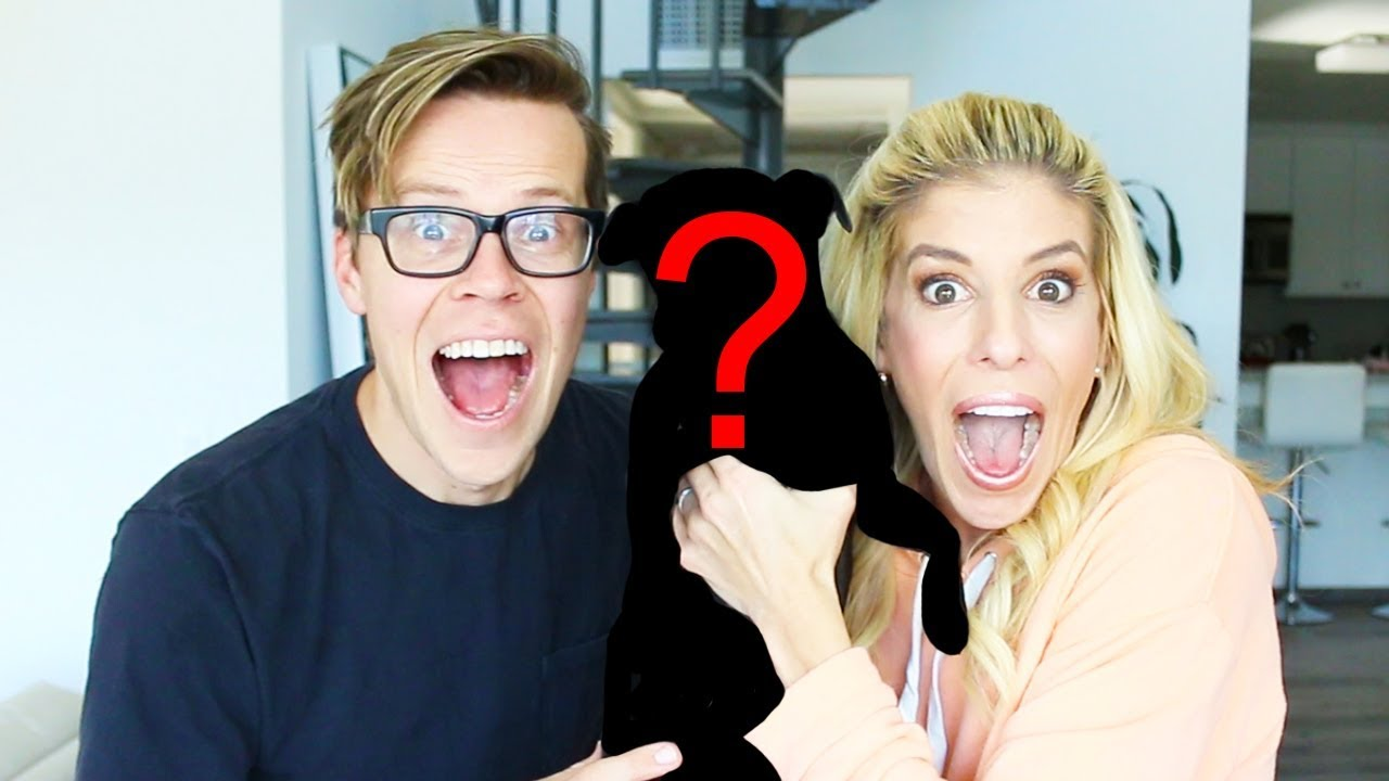 Surprising Rebecca with a New Puppy! A Wife's Reaction.