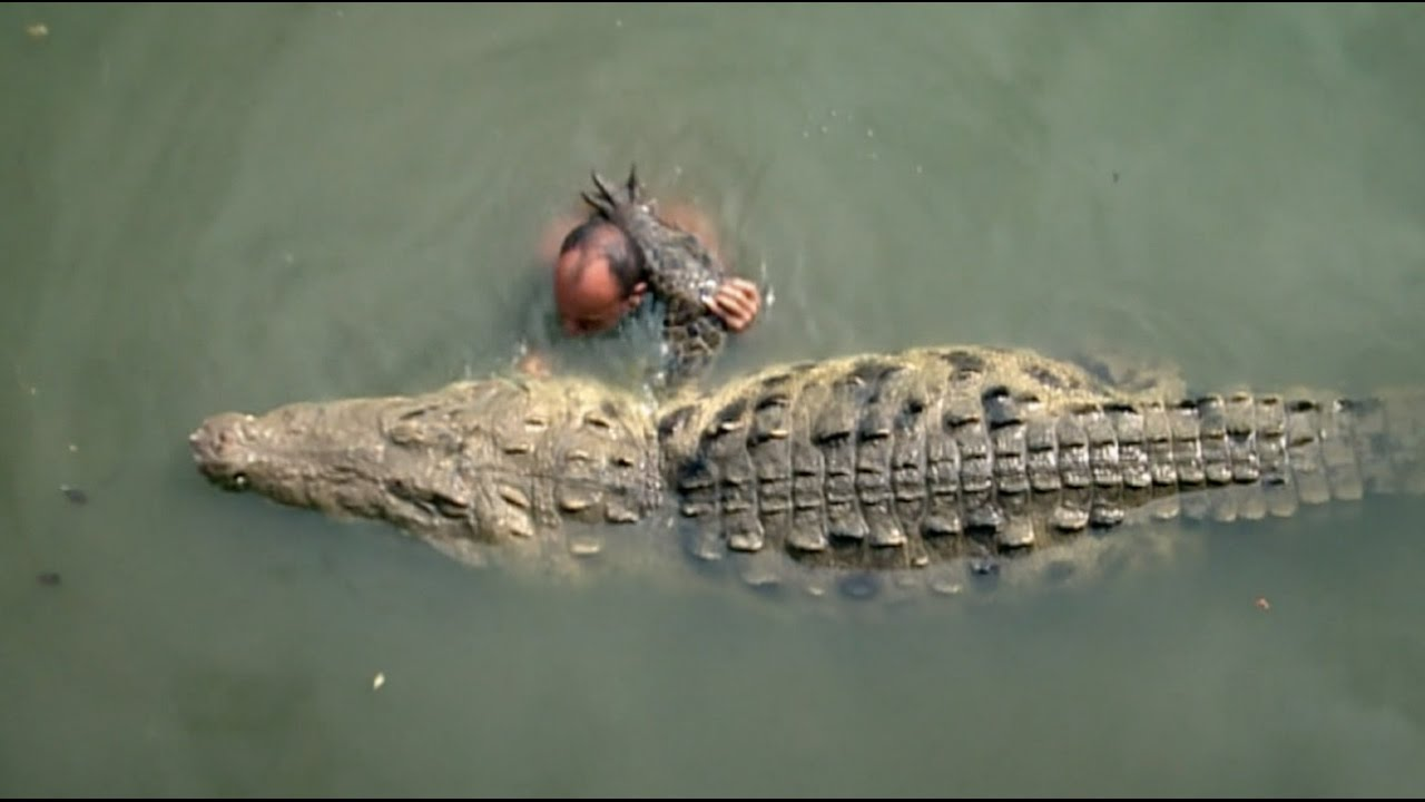CRAZIEST GIANT ALLIGATOR EXPERIENCE EVER! (DAY 125)
